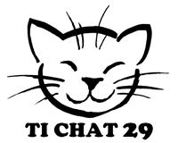 Association TI CHAT 29