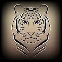 Association - Tigre de l'Amour