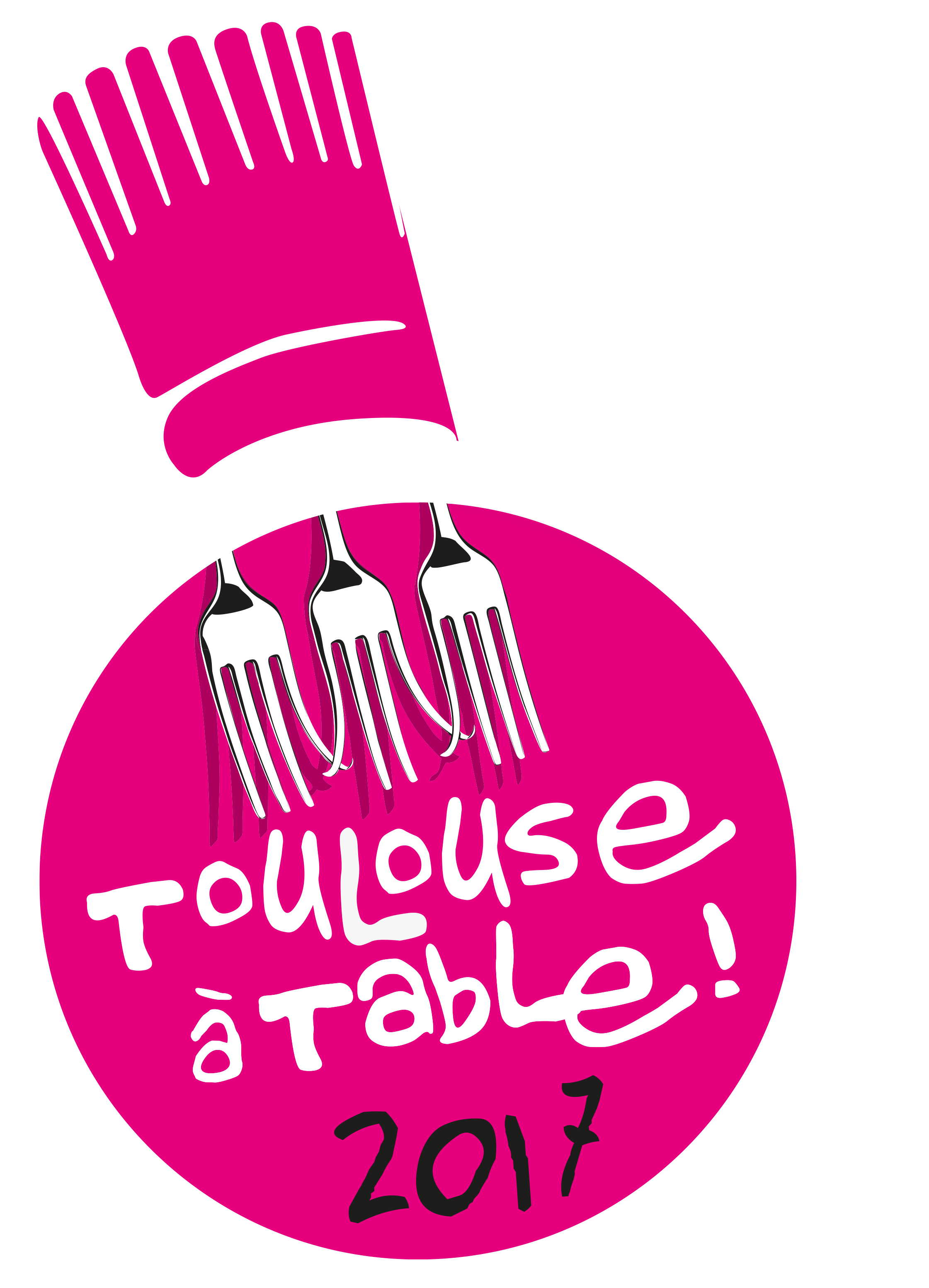 Toulouse A Table