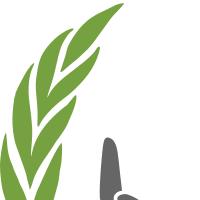 Association - TRANS ESPOIR (ORPHELINS  SYRIE )