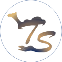 Association - Transaharienne
