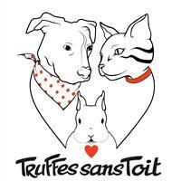 Association - Truffes Sans Toit