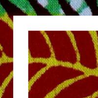 Association - Trust Africa