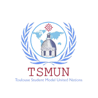 Association TSMUN (Toulouse Student Model United Nations)