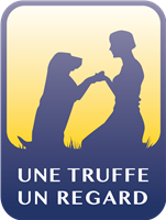 Association une truffe un regard