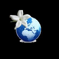 Association - UNFT  95 ET ILE DE FRANCE