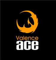 Association Valence ACE Volley-ball club