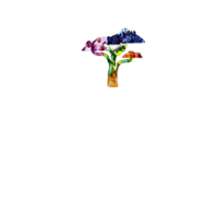 Association Vayiri Com'cept