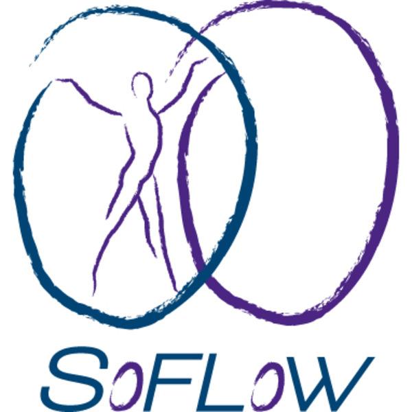 Association - SoFlow