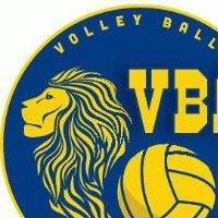 Association - Volley Ball Arlésien
