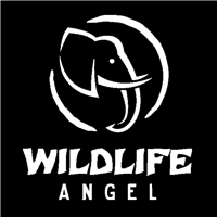 Association - WILDLIFE ANGEL