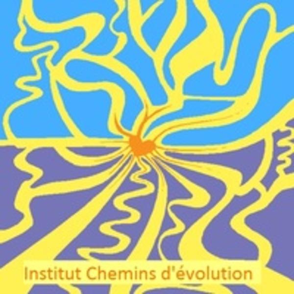 Association - Institut Chemins d'évolution