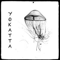 Association - YOKATTA