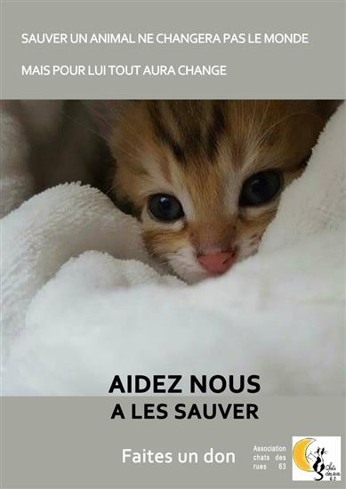 gratuit en ligne rencontres chat salles aucun enregistrement