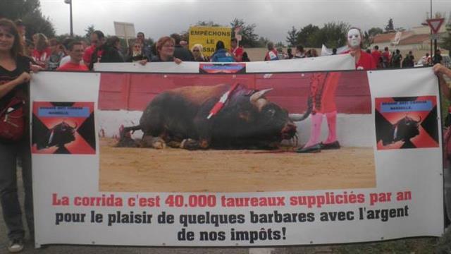 Brigade Anti Corrida Marseille