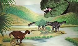 Comité pour un Muséum des Sciences et d'Histoire Naturelle dans le Pays d'Aix