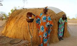 Sénégal - Agronomes et Vétérinaires Sans Frontières