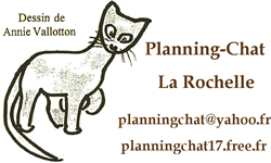 Planning-Chat
