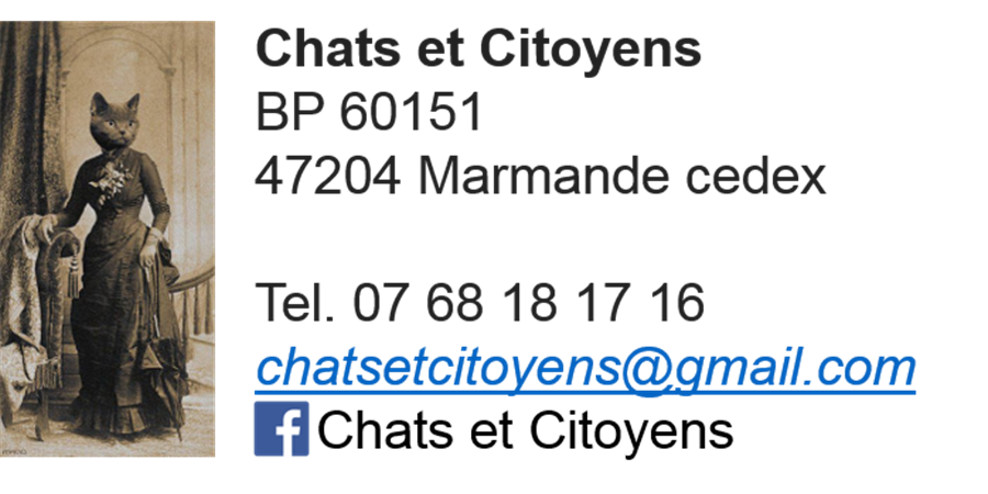 association Chats et Citoyens - Chats et Citoyens