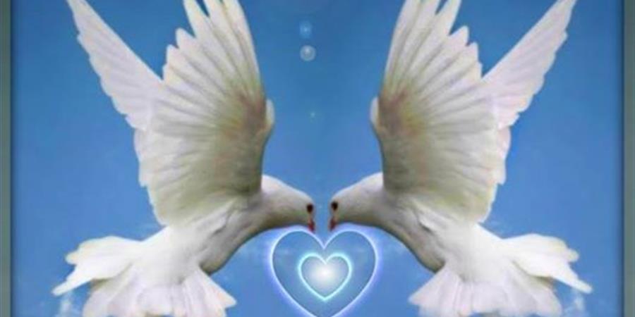 adhérer à l'éveil du coeur - l'Eveil du coeur