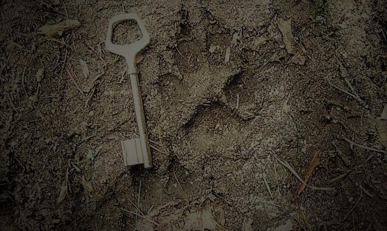 Faisons vivre la légende, défendons le loup ! - Alliance Avec Les Loups