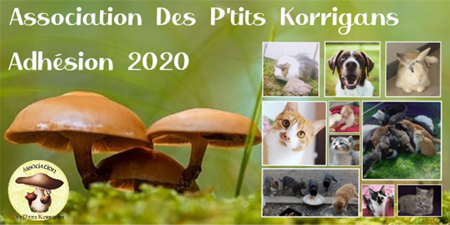 Adhésion 2020 - Association des p'tits korrigans