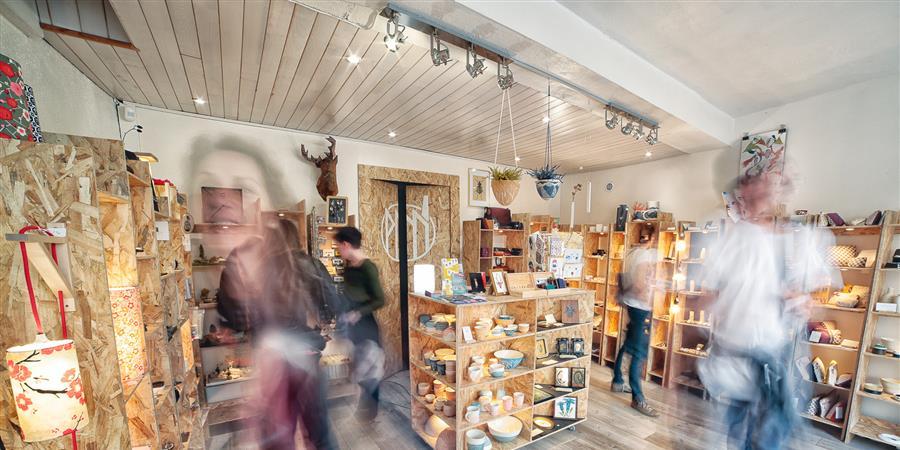 Formulaire d'adhésion annuel - La petite manufacture, vitrine d'artistes