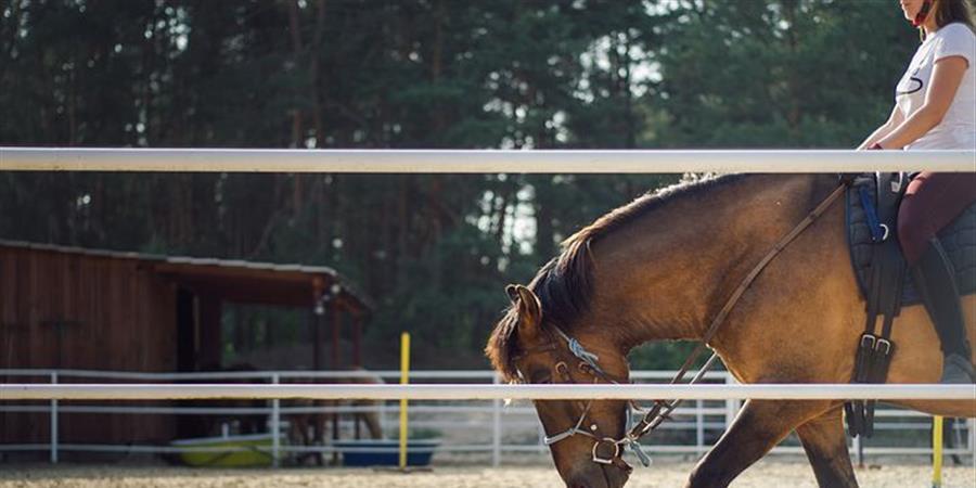 Equitation 3 à 6 ans - Lundi 15H30 - Ile de loisirs de Jablines - 2 - ASSO COUP DE POUCE