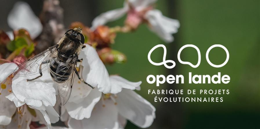 Associations, fédérations, syndicats, enseignement supérieur - Open Lande 2020 - OPEN LANDE