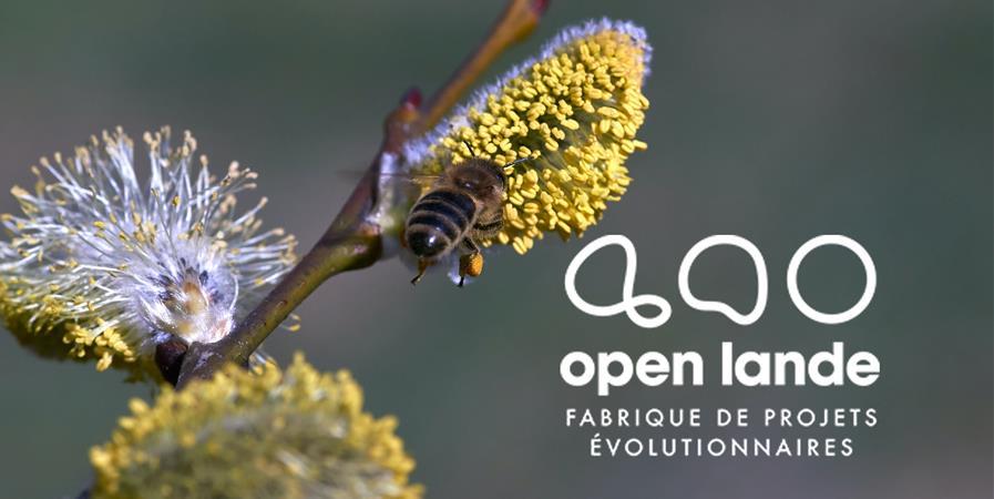 Entreprises - Open Lande 2020 - OPEN LANDE