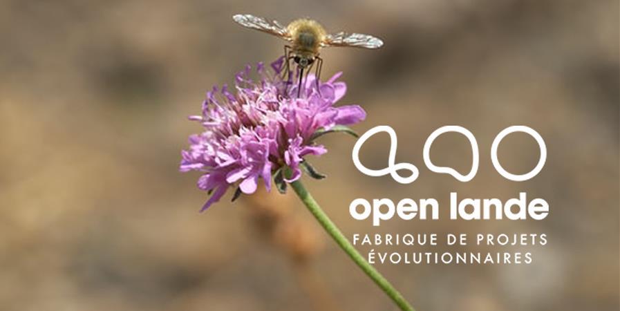 Particuliers - Open Lande 2020 - OPEN LANDE