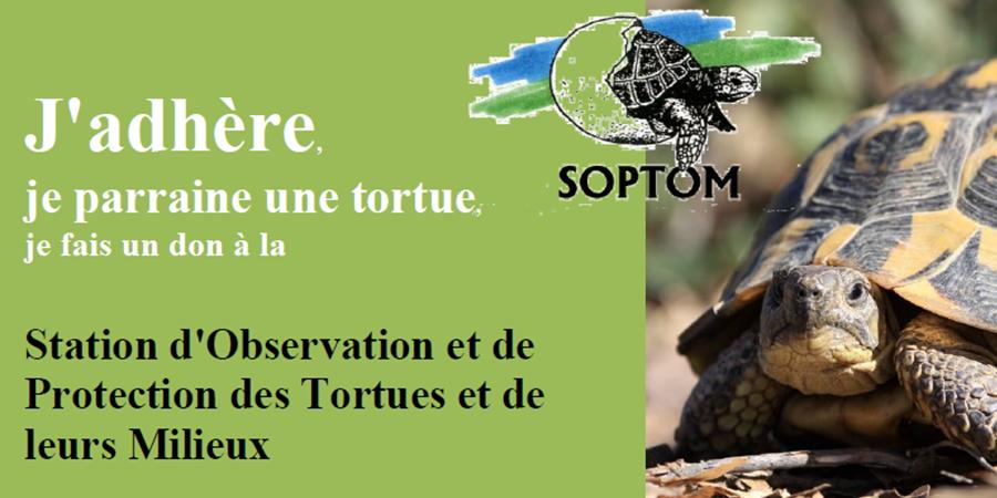 Soutenez la SOPTOM : adhérez ! - Station d'Observation et de Protection des Tortues et de leurs Milieux