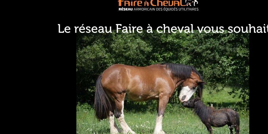 Adhésion 2019 - Reseau Faire à cheval