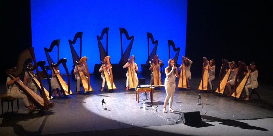 Adhésion à l'asso - Harpo Mélusine