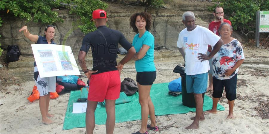 Adhérer à l'APNE - Martinique - Association pour la Protection de la Nature et de l'Environnement - Martinique