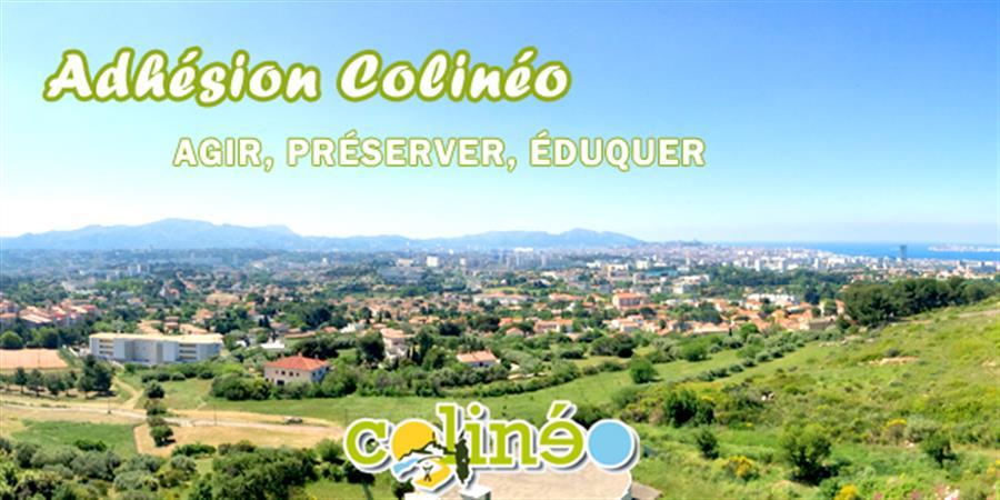 Cotisation annuelle* Colinéo - Colinéo