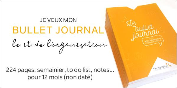 Le Bullet Journal de la reconversion professionnelle - P.L Bordeaux