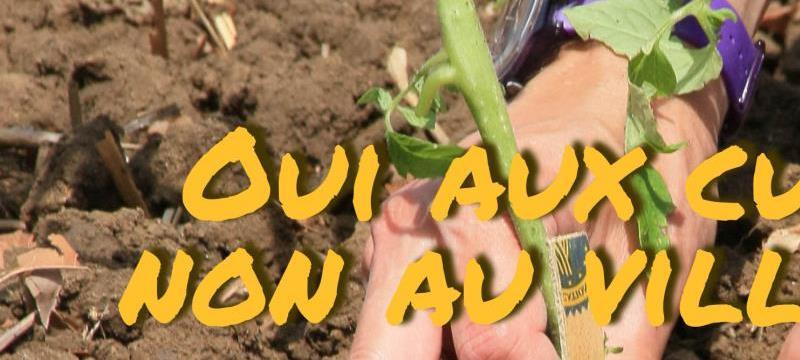 Sauver 19 ha de terres fertiles pour de jeunes agriculteurs/trices en bio. - ADRY