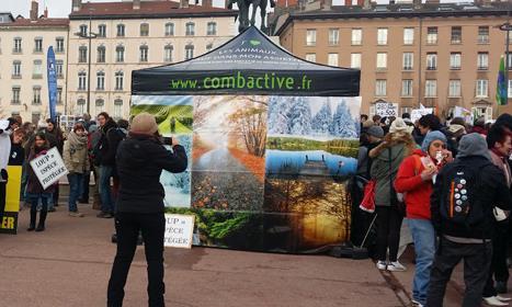 Association Combactive, depuis 2008 pour les animaux - Combactive