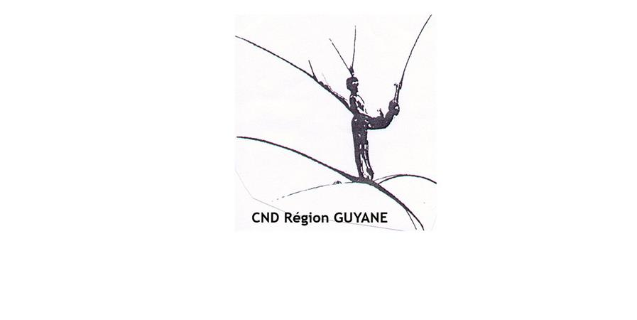 PROFESSEURS CND 2020/2021 - CONFEDERATION NATIONALE DE DANSE REGION GUYANE