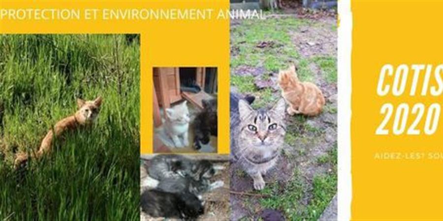 ADHESION 2020 - PROTECTION ET ENVIRONNEMENT ANIMAL