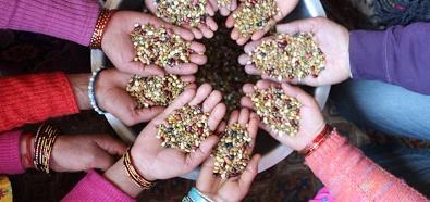 Devenez membre de SOL, Alternatives Agroécologiques et Solidaires - SOL