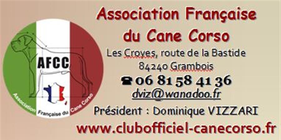 ADHESION AFCC 2019 - ASSOCIATION FRANCAISE DU CANE CORSO