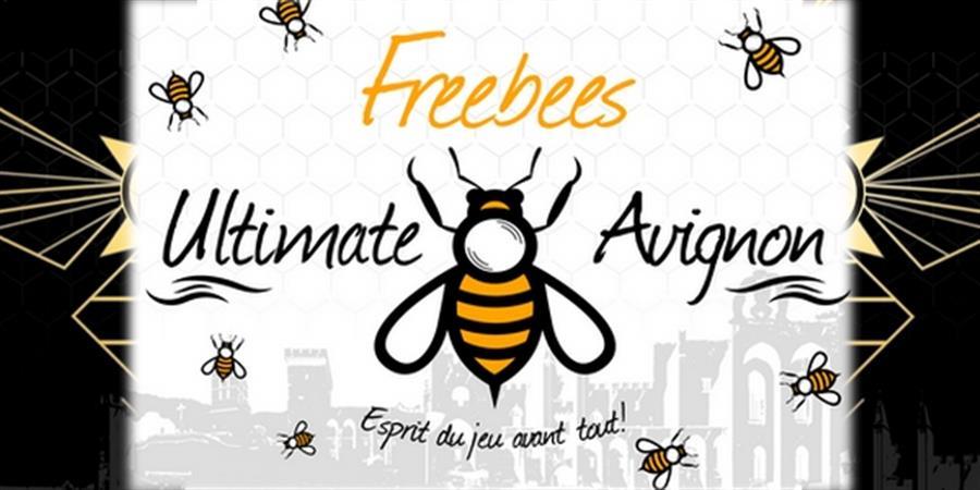 Licence freebees loisir et compétition - Ultimate freebees Avignon