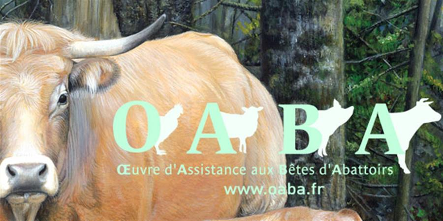 Adhérer ou renouveler sa cotisation à l'OABA - OABA