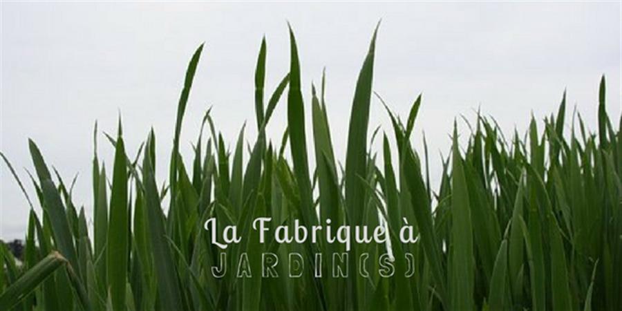 Adhérer à La Fabrique à Jardin(s) - La Fabrique à Jardins