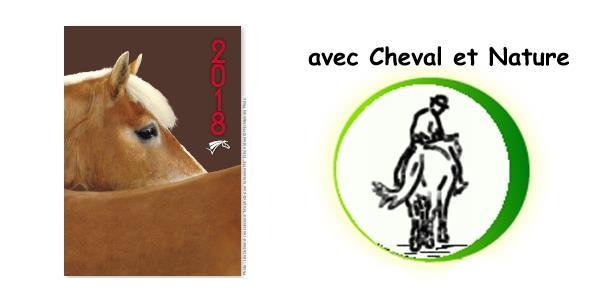 Adhésion Cheval et Nature avec ou sans licence FFE - cheval et nature