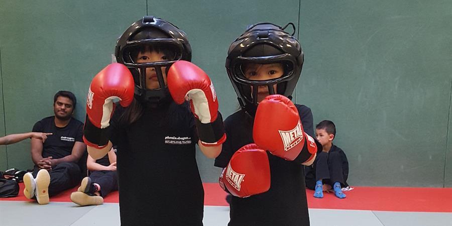 Adhésion Enfant KUNG FU 2020-2021 - Association Sports de Combat et d'Arts Martiaux
