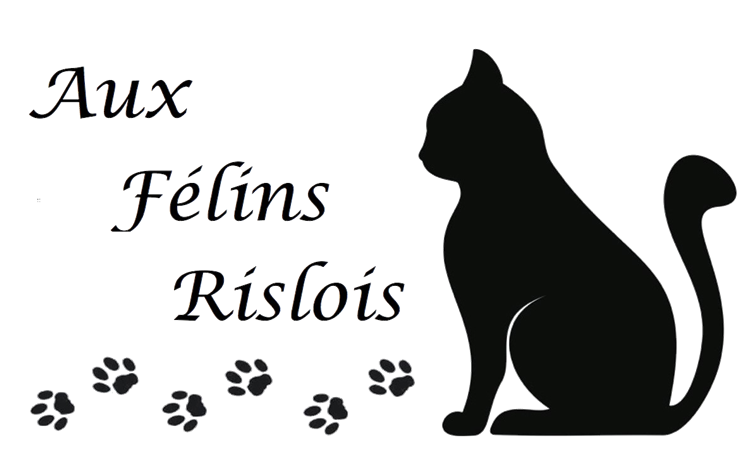BULLETIN D'ADHÉSION 2018/2019 - Aux Félins Rislois
