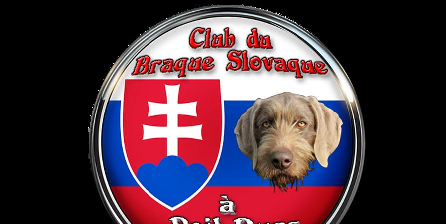 Adhésions en ligne - Club du Braque Slovaque à Poil-durs